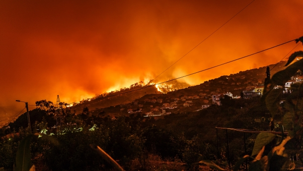 AI Model Rapidly Identifies Structures Damaged by Wildfires